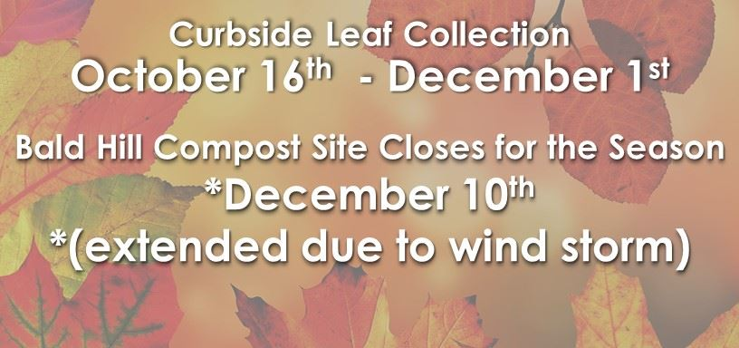 View leaf collection and disposal details for the fall of 2017