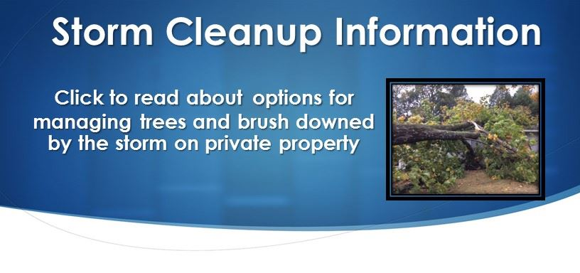 helpful information for residents about the options for managing their trees and brush downed by the storm in their own yards