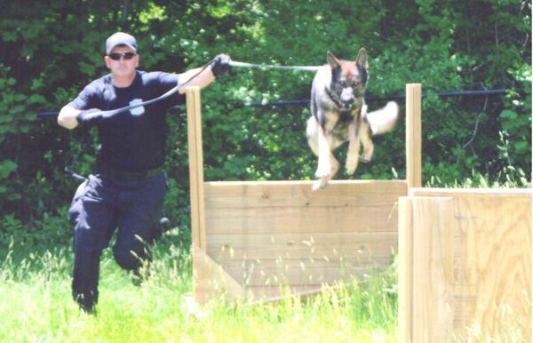 An officer training a police dog.